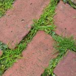 PRT Landscaping (3)