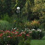 PRT Landscaping Yards (1)
